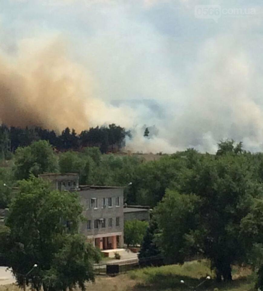Вблизи Энергодара подожгли лес, фото-1