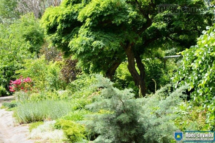 Екологічний обласний семінар в Нікополі, фото-1