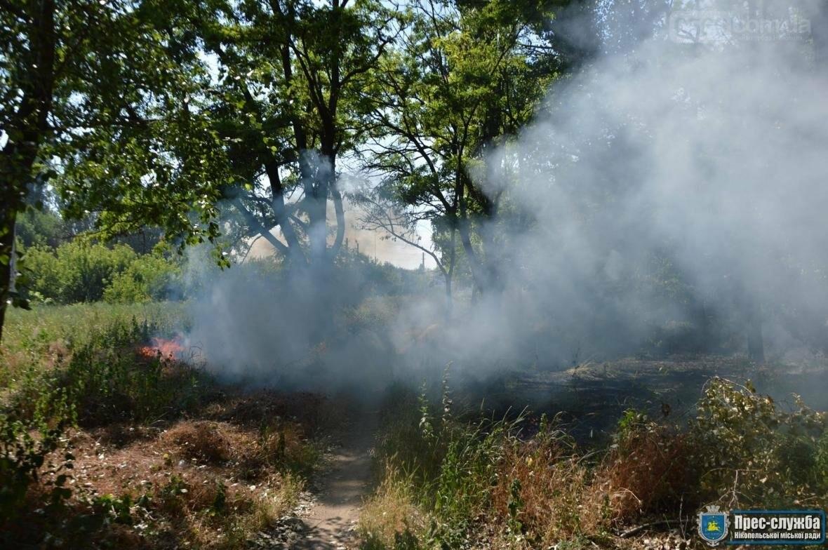 Небезпечне загорання трави в Нікополі поблизу автозаправки, фото-3