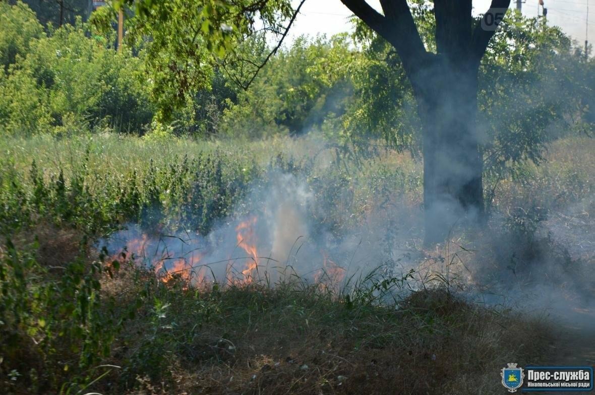 Небезпечне загорання трави в Нікополі поблизу автозаправки, фото-1