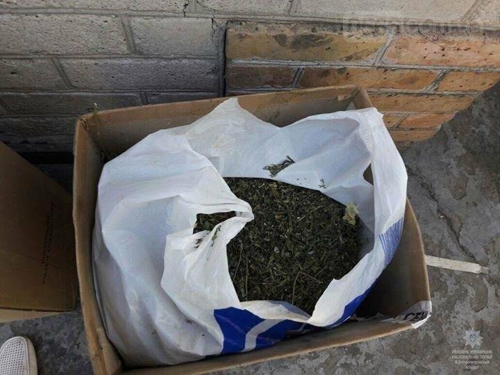 Нікопольськими правоохоронцями було виявлено 80 кущів конопель, 3 кг сухої трави та амфетамін, фото-3