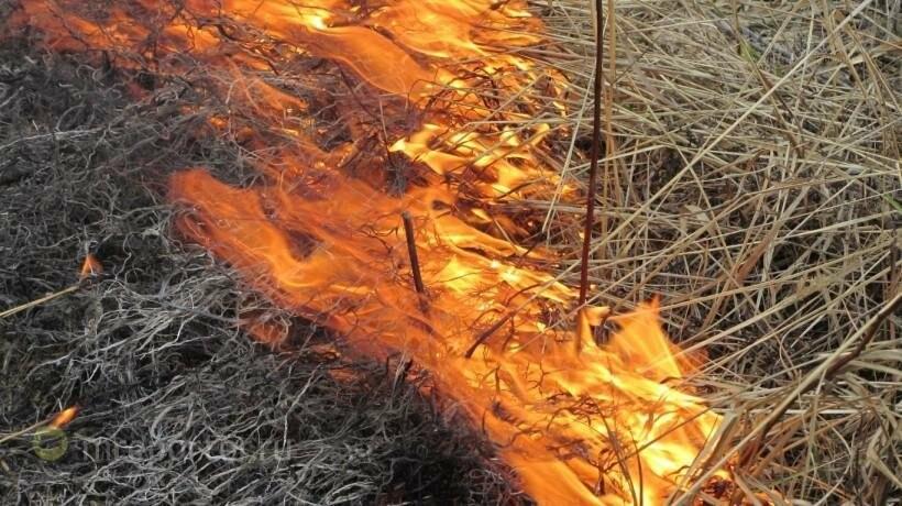 В Никополе сохраняется 5-й класс пожароопасности, фото-1