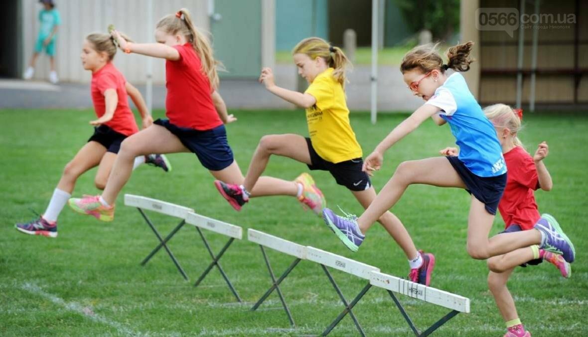 Популяризація спорту в школах, фото-1
