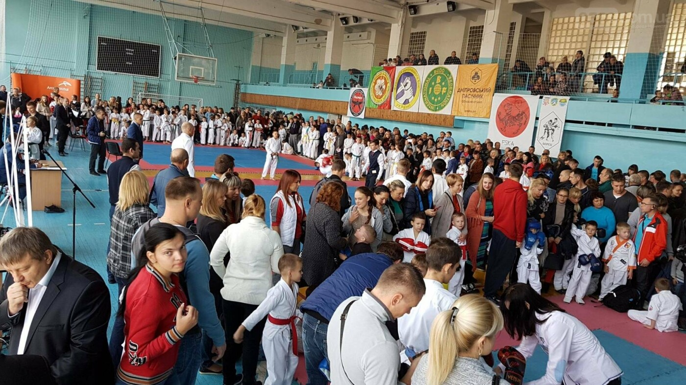 Команда Федерации Тайкан Каратэ привезла в Никополь 37 медалей, фото-1