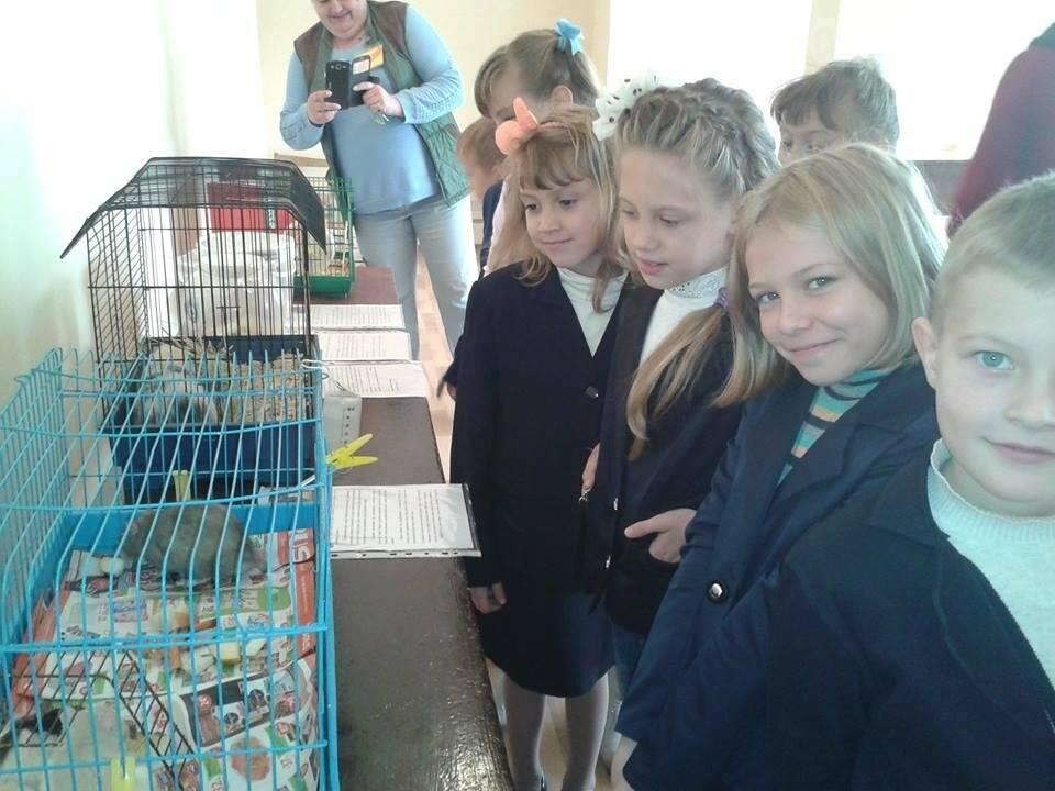 Нікопольські учні відвідали виставку тварин еколого-натуралістичного центру, фото-1