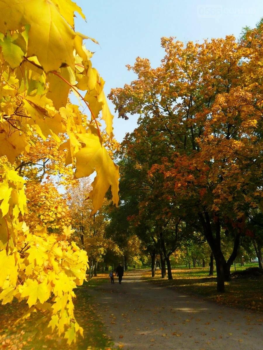 Осенний Никополь , фото-1