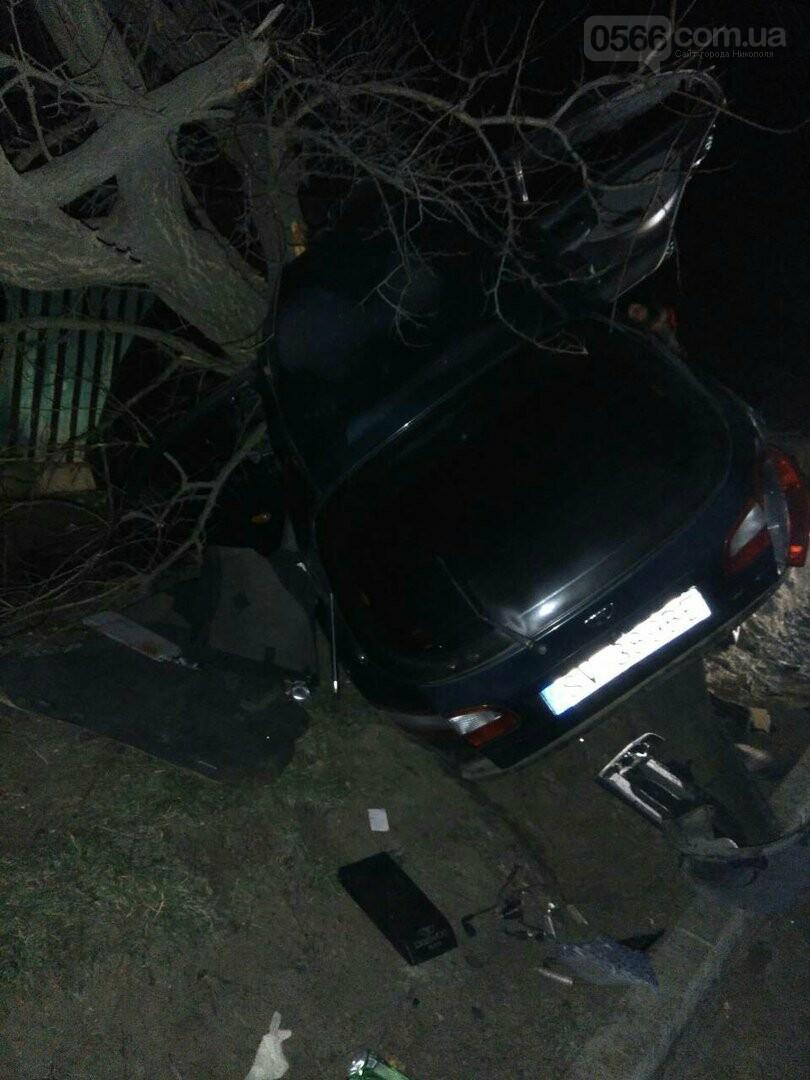 ДТП в Никополе: автомобиль врезался в дерево, есть пострадавшие, фото-2