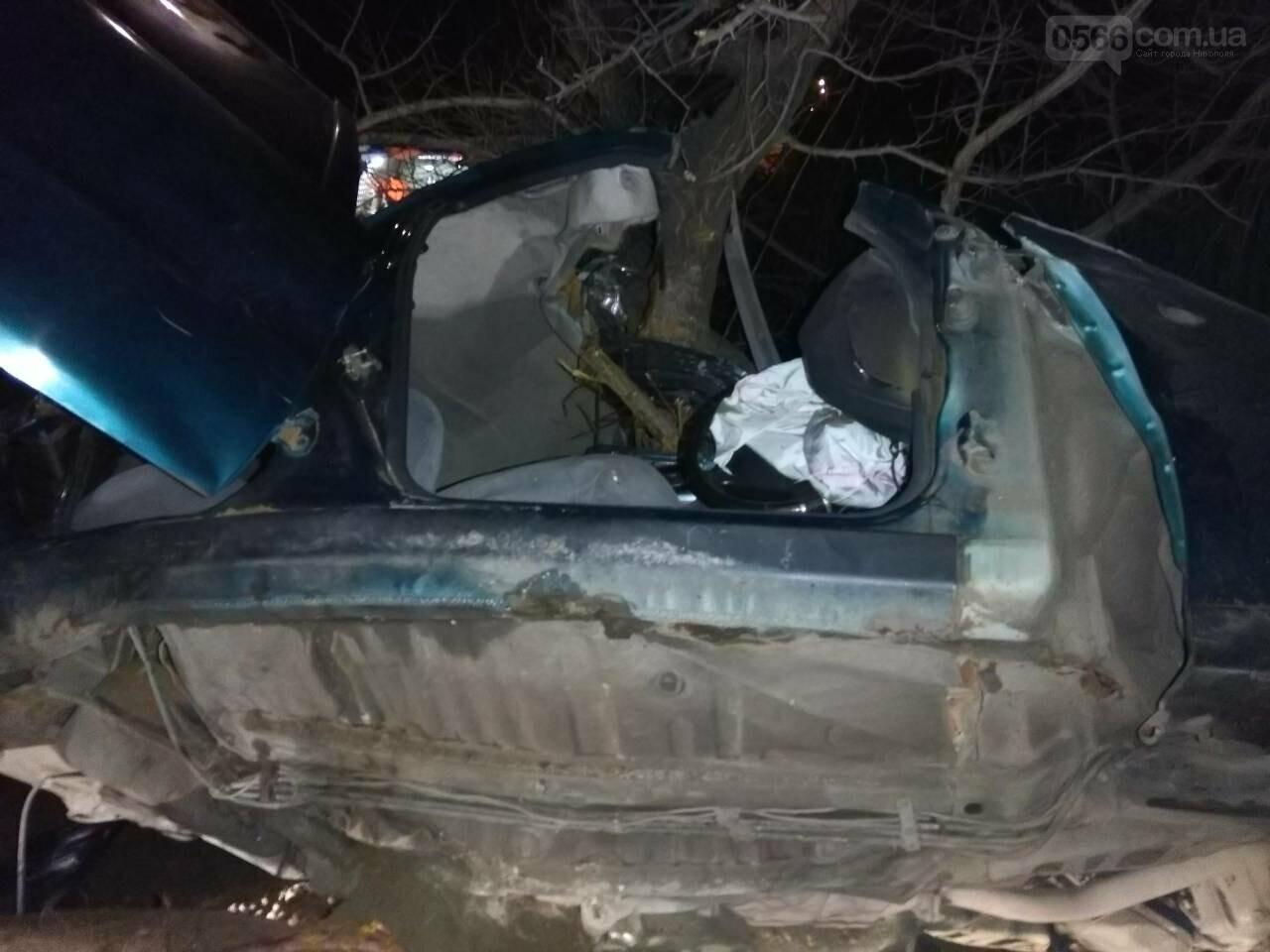ДТП в Никополе: автомобиль врезался в дерево, есть пострадавшие, фото-3