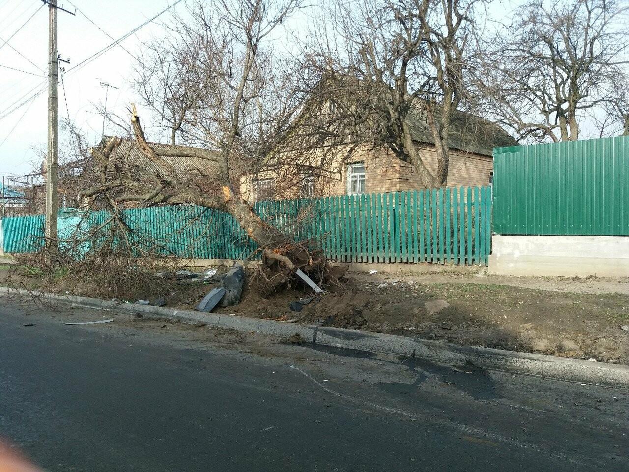 ДТП в Никополе: автомобиль врезался в дерево, есть пострадавшие, фото-4