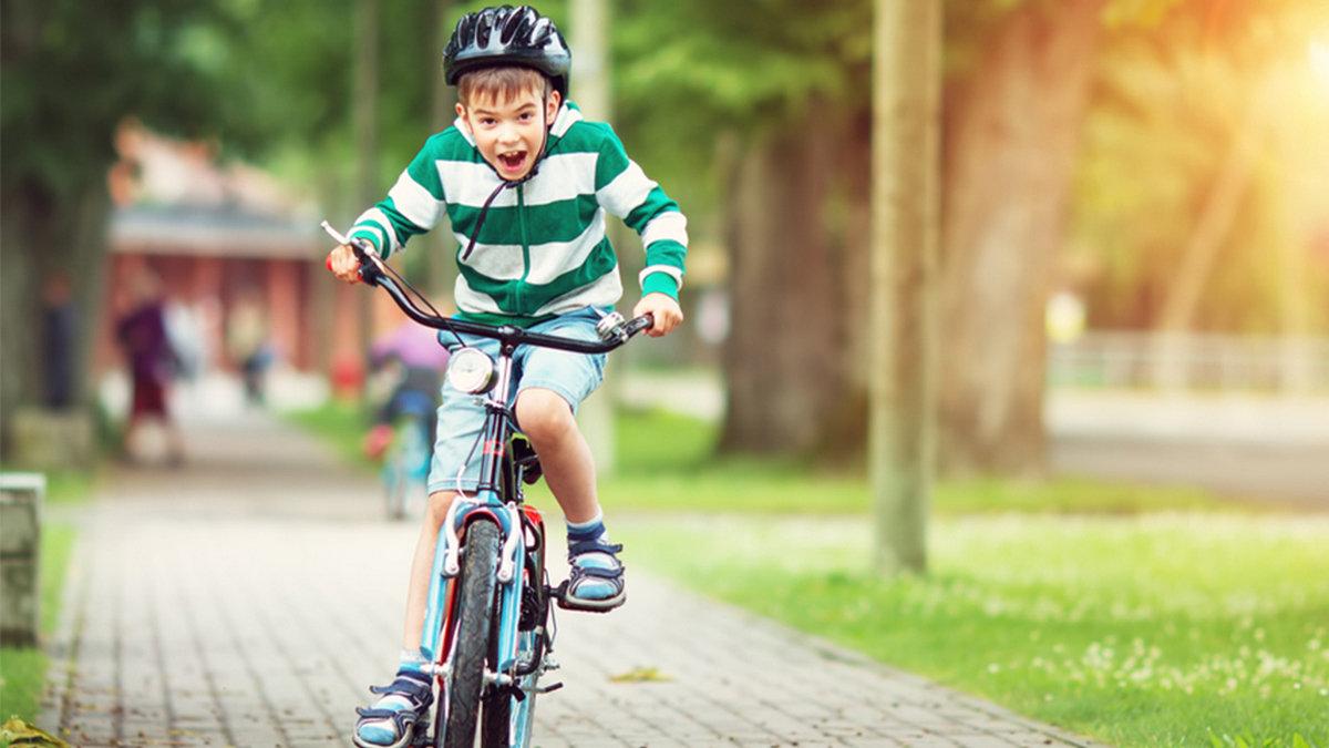Украденный велосипед в Никополе ребенку вернули , фото-1