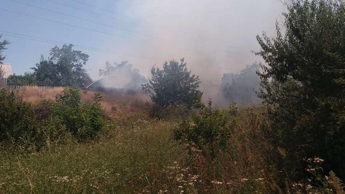Сады и огороды горели в Никополе на улице Довголевской, фото-1