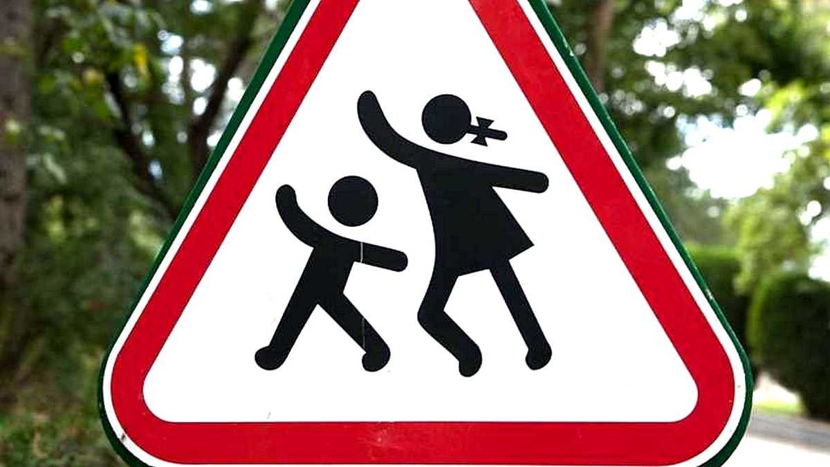 Знаки ограничения скорости установили на улице Патриотов Украины в Никополе, фото-1