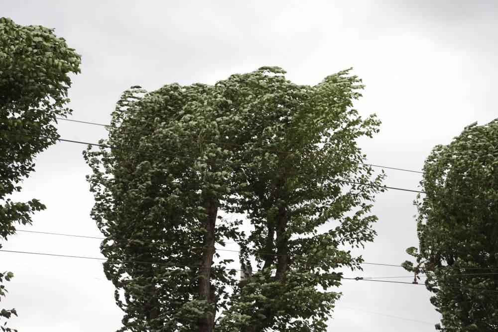 Гроза, град и сильный ветер ожидается в Никополе и области, фото-1